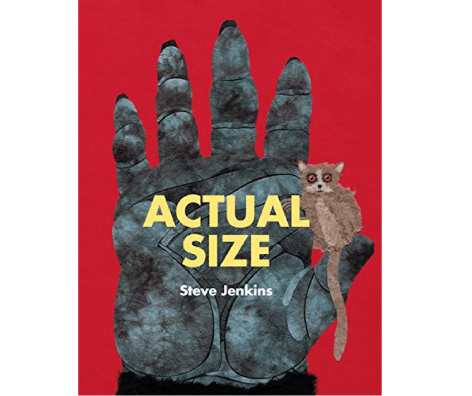 Actual Size a kids book about measurement