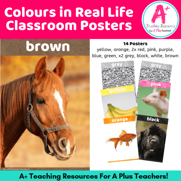 Learning Colours in Real Life classroom Posters Image